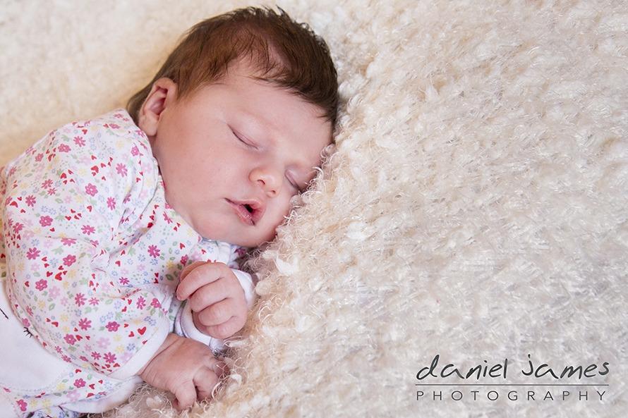 newborn portrait dudley