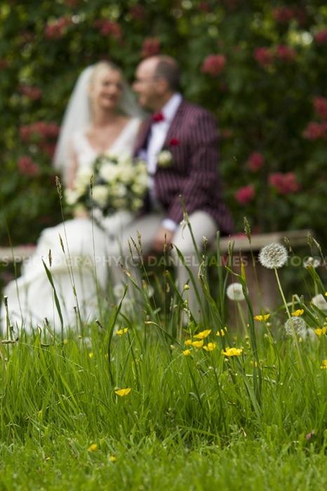arley arboretum wedding photographer