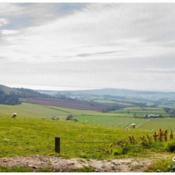 sidmouth landscape devon