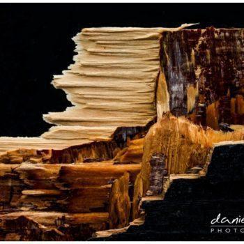 wood chop abstract