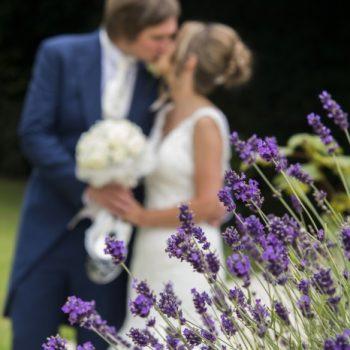 wedding photographers mount hotel